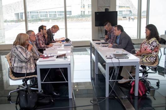 Falando perante o comité de expertos do Consello de Europa